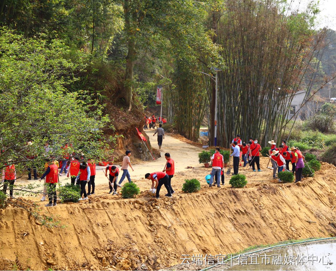 党员自愿者为丹竹村植树添绿